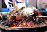河豚丟在火爐上烤著吃,致命毒素被忽略了嗎?