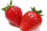 最好吃的草莓品種都在這裏,你吃過幾種?