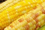 按這個方法煮玉米,真的吃著更軟糯,聞著更清香